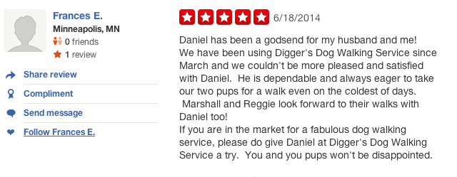 Edina-dog-review-Pet-Sitting-Daniel-Diggers.jpg